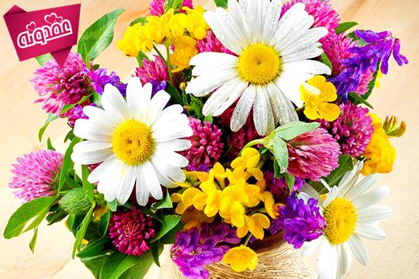 چند توصیه درباره گل ها